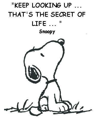 snoopy quotoe