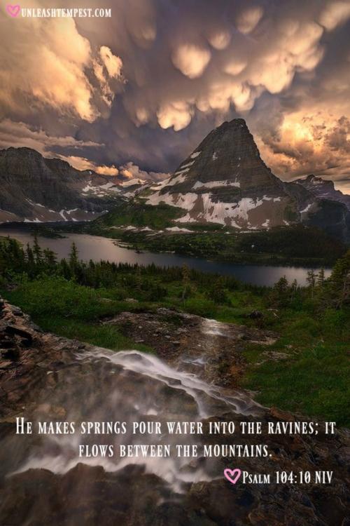 Psalm 104.10